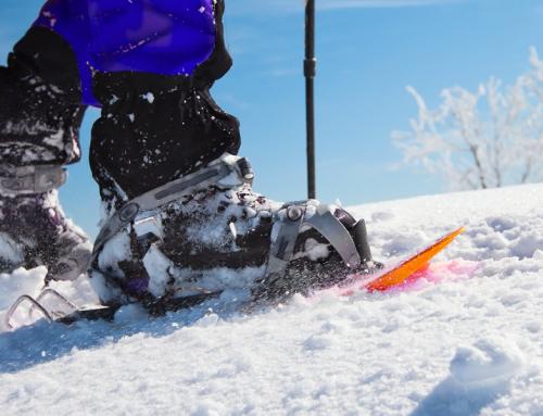 Raquetes i esqui de muntanya