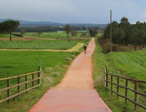 Via verda Olot-Girona (+50km)
